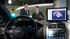 Blackberry self-driving cars