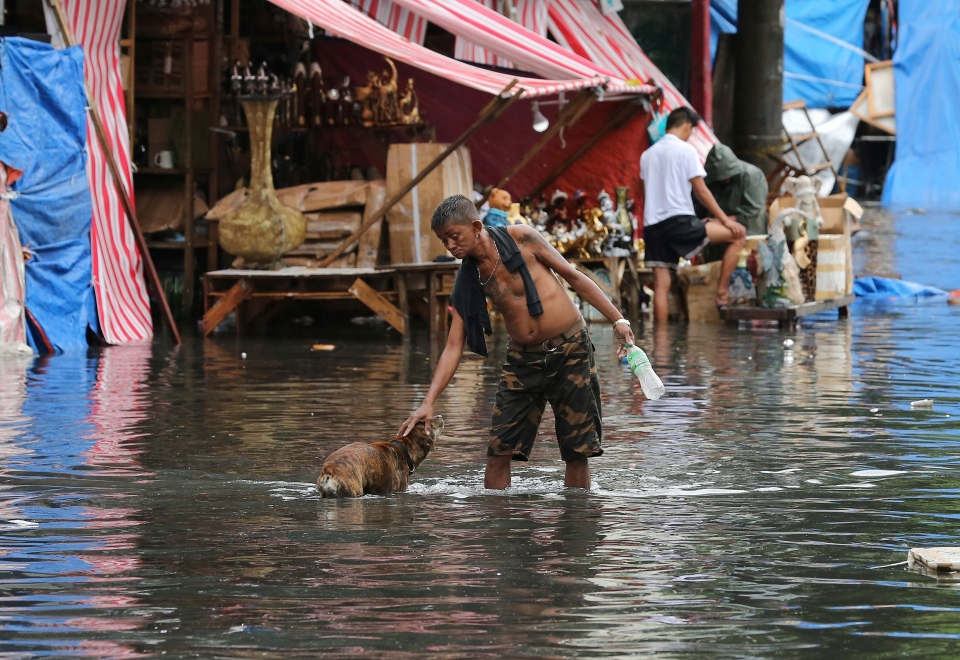 A man pets a dog along a flooded street caused by rains from Typhoon Nock-Ten in Quezon city, north of Manila, Philippines on Monday, Dec. 26, 2016. The powerful typhoon slammed into the eastern Philippines on Christmas Day, spoiling the biggest holiday in Asia's largest Catholic nation. (AP Photo/Aaron Favila)