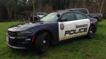 A Saanich police cruiser is seen in Gorge Park, Wednesday, Dec. 28, 2016. (CTV Vancouver Island)