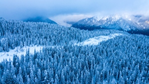 Photos captured by CTV Vancouver&#39;s Pete Cline shine a spotlight on some of the region&#39;s most stunning spots. <br><br> Pictured: The view from Chopper 9 over the hills near Cypress Mountain ski area in December 2016.