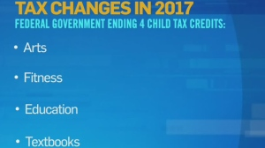 Canadians for tax fairness Dennis Howlett