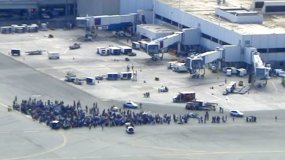 Crowds of people evacuated onto the tarmac at the Fort Lauderdale-Hollywood International Airport, on Jan. 6, 2017.