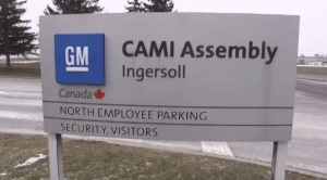 Cami Ingersoll Plant