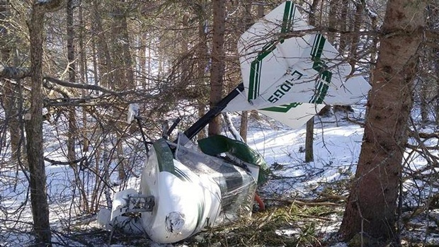 Doug Desruisseau escaped uninjured after his plane crashed into these trees Friday night.