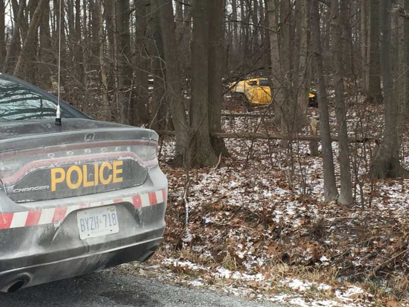 OPP are investigating in Kingsville after a motorist left the roadway and ended up in a wooded area off South Talbot Road on Saturday, Jan. 7, 2017. (Alana Hadadean / CTV Windsor)