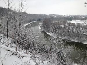 The Grand River is seen near Homer Watson Park in Kitchener on Thursday, Dec. 29, 2016. (Dan Lauckner / CTV Kitchener)
