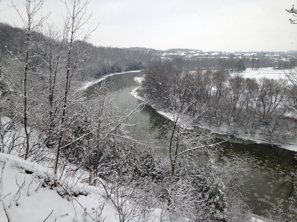 The Grand River is seen near Homer Watson Park in Kitchener on Thursday, Dec. 29, 2016. (Dan Lauckner / CTV Kitchener)