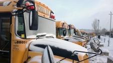 School buses snowy