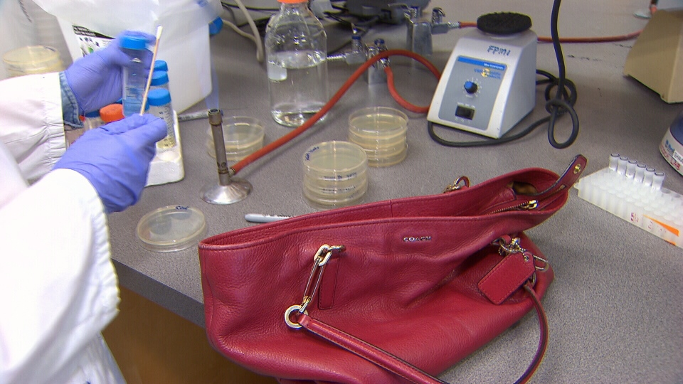 A UBC researcher swabs Mi-Jung Lee's purse to see what germs are on the bag. (CTV)