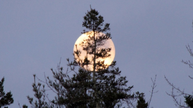 """Last night's """"almost""""  Full Wolf Moon over Port Medway in Queens county, NS.  Thanks to David Whynacht for sharing."""