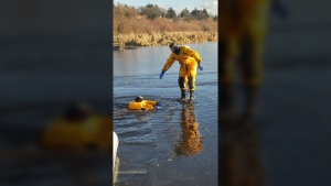 ice water rescue saanich