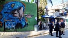 Blue Parrot nightclub in Playa del Carmen, Mexico
