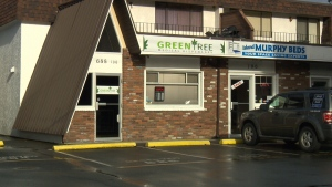 Green Tree Medical Dispensary has five days to remove its signage and any marijuana or related products from the premises. (CTV Vancouver Island)