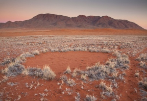 One of the mysterious 'fairy circles' is shown in the Namib desert. (Jen Guyton/www.jenguyton.com via AP)
