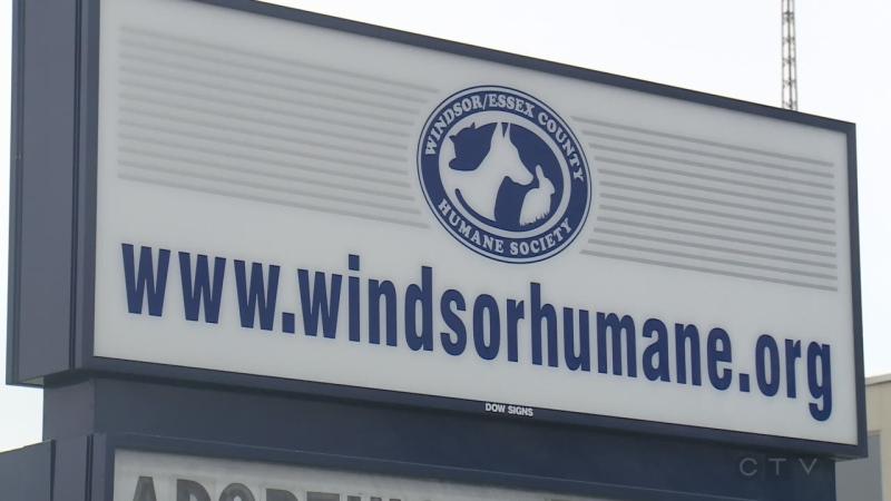 Windsor Humane Society