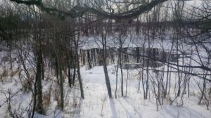 Saskatchewan pipeline leak