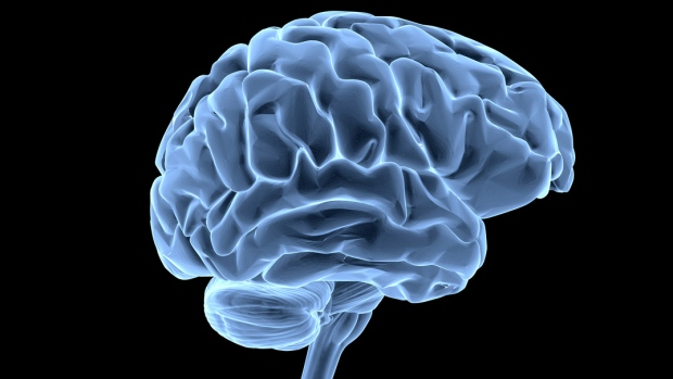 The human brain is pictured in this file photo. (goa_novi / Istock.com)