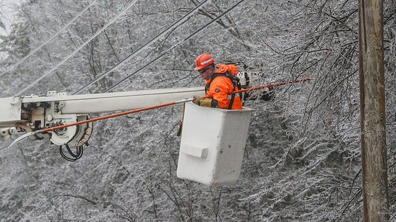 NB Power crews work to remove a build up of ice on trees and power lines following an ice storm on Jan. 25, 2017. (NB Power)