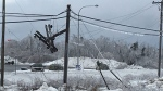 A downed power pole is seen following an ice storm in Miramichi, N.B. following an ice storm. (Jonathan MacInnis)