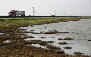 This Tuesday, Jan. 17, 2017, photo shows water in a wildlife area by Cullinan Ranch comes close to Highway 37 near American Canyon, Calif. California, under Gov. Jerry Brown, is a leader in fighting climate change. (AP Photo/Eric Risberg)