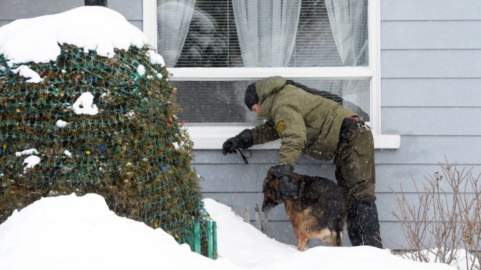 A police officer and his dog look for evidence near a home in the area of a Quebec City mosque on Monday, Jan. 30, 2017. (Paul Chiasson / THE CANADIAN PRESS)