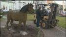 Sawatsky Sign-Off- Barb's Horse