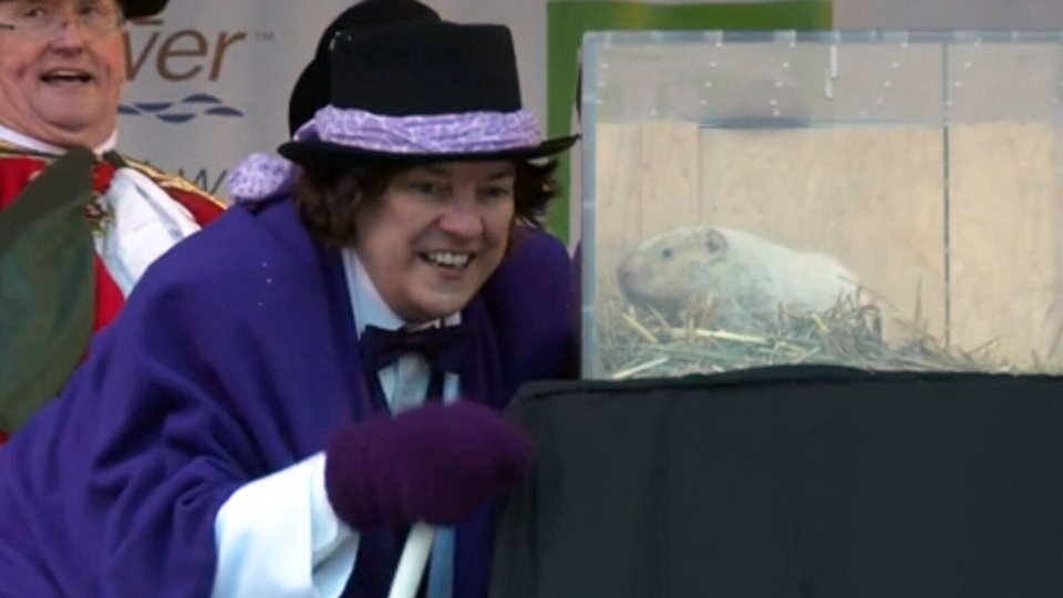 South Bruce Peninsula Mayor Janice Jackson confers with Wiarton Willie as the the albinio groundhog makes his annual midwinter weather prediction in Wiarton Ontario, Thursday, Feb. 2, 2017. (Willy Waterton / THE CANADIAN PRESS)