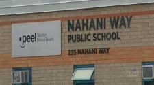Nahani school