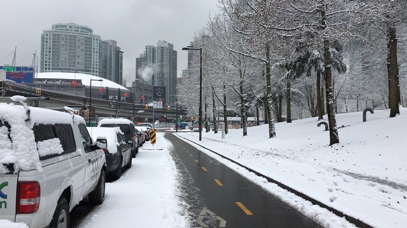 Plowed bike lanes left some people questioning Vancouver's priorities during Friday's snowstorm. Feb. 3, 2017. (CTV)