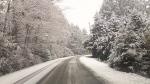 More snow is expected to fall Saturday night and cold conditions will continue for Sunday. Feb. 3, 2016 (CTV Vancouver Island)