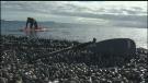 Sawatsky Sign-Off- Snow Day at Sea