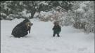 Sawatsky Sign-Off- The Wonder of Snow