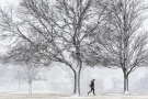 A student makes her way across the Taylor University campus in Upland, Ind., as snow falls on Wednesday, Feb. 8, 2017. (Jeff Morehead/The Chronicle-Tribune via AP)