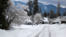 British Columbians should be prepared for winter storms, which can cause strong winds, falling trees, flooding, traffic disruptions and blizzards.