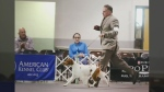 Canadian pup 'Baylee' to compete in Westminster Do