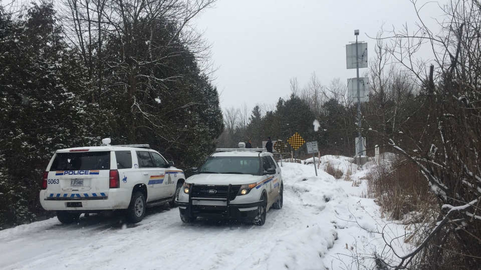 RCMP officers wait to intercept people crossing the border on Roxham Road near Hemmingford, Que. (CTV Montreal)