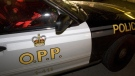An OPP cruiser seen in this file photo.