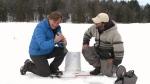 CTV Ottawa: Regional Contact: Kenauk Nature