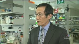 CTV Northern Ontario: Human gas research