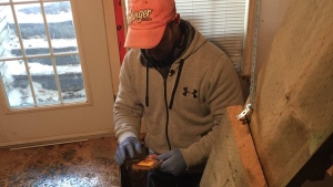"""Exterminator Denny Andrade is never out of work. """"Rats and bedbugs are recession proof."""" (CTV Montreal/Rob Lurie)"""