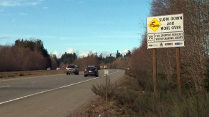 A highway sign reminds drivers to slow their speed and move over for flashing lights, but commercial drivers on Vancouver Island say many motorists aren't obeying the law. Feb. 17, 2017. (CTV Vancouver Island)