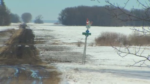 More asylum seekers made their way across the Canada-US border in Emerson on foot Wednesday.