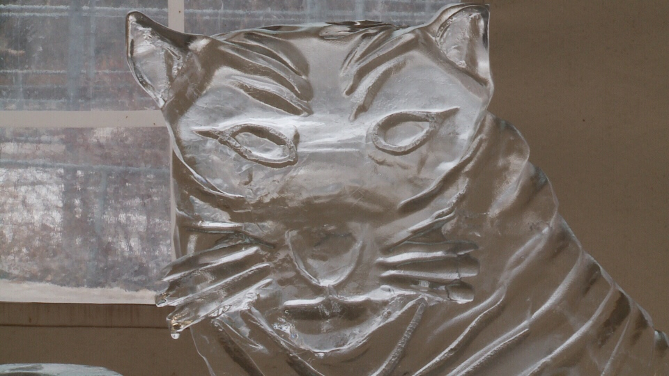 An ice sculpture on display at the Frosted Gardens Festival is shown on Feb. 19, 2017 (Mark Villani / CTV Saskatoon)