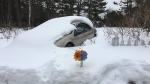 Cape Breton Regional Police are investigating after the body of a 66-year-old man was found buried under the snow near his vehicle.