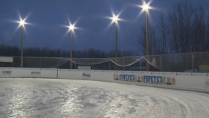 A charity hockey game at Saiker's Acres had to be postponed Monday, February 20, after warm weather melted the ice.
