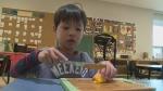 Metro Green Apple School Program in Windsor