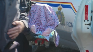 The RCMP arrested a family with a baby as they crossed the border illegally on Feb. 20, 2017