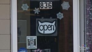 Businesses in the Glebe open on a statutory holida