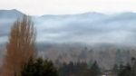 Courtenay named in worst air quality study