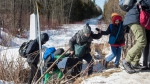 A family of asylum claimants crosses the border into Canada from the United States, Monday, February 20, 2017 near Hemmingford, Que. A growing number of people have been walking across the border into Canada to claim refugee status. THE CANADIAN PRESS/Paul Chiasson